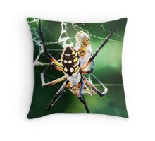 Trapped in a Spider's Web Throw Pillow