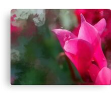 Dew Drops On Flower Canvas Print