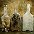Dirty Bottles by Barbara Ingersoll