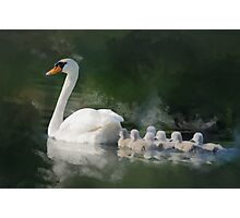 Following mother Photographic Print