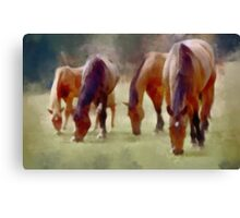 Grazing Horses Canvas Print