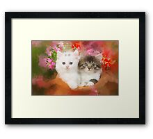 Kittens in a pot Framed Print
