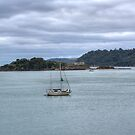 Drakes Island Plymouth by spemj