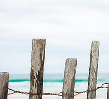 Beach Fence by Shelby Young