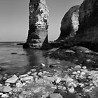 The Stack Selwick Bay Flamborough by spemj
