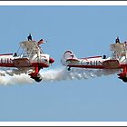 Wing walkers by Gordon Holmes