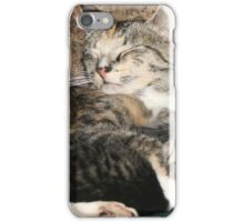 Domestic Bliss iPhone Case/Skin