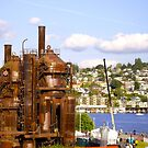 Above GasWorks Park by Mike Cressy