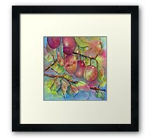 Pick Your Own Plums Framed Print