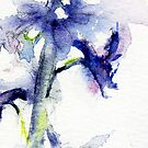 larkspur purply/blue by CheyAnne Sexton