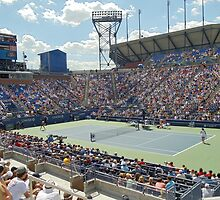 US Open 2010 - Armstrong Stadium Action by leystan