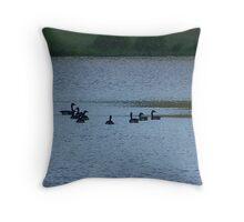 Geese Swiming on lake Throw Pillow