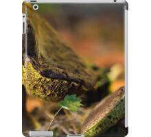 pair of boletes iPad Case/Skin