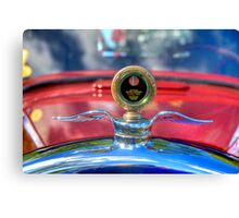 Silver Wings Canvas Print