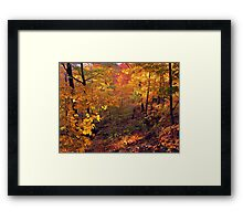 Fiery Forest Framed Print