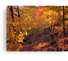 Fiery Forest Canvas Print
