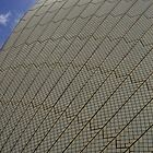 Sydney Opera House by Maggie Hegarty