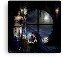 the Magic potion Maker Canvas Print