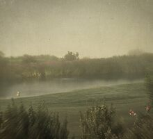 Water Trap by Kevin Bergen