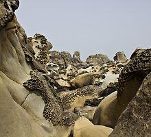 Alien Landforms by shaynoodle