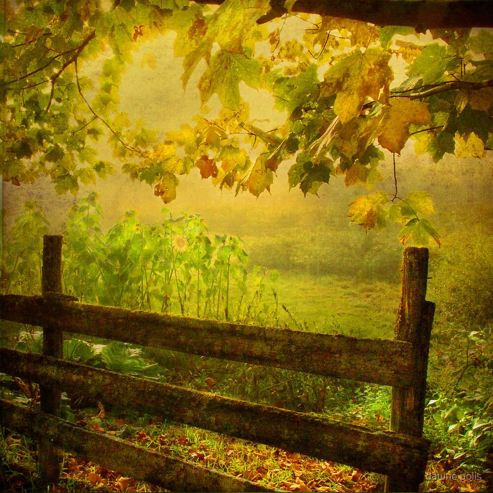 autumn overture by dawne polis
