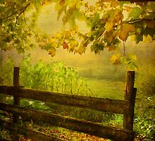 autumn overture by dawne polis