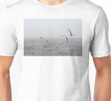 Flying Into the Mist Unisex T-Shirt
