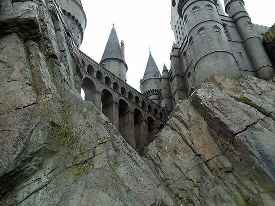 The Wizarding World of Harry Potter by leystan