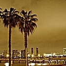 """Night Sky - San Diego Boardwalk"" by Omar  Mejia"