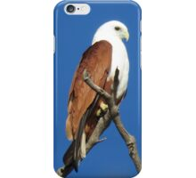 The Guardian (Brahminy Kite) iPhone Case/Skin