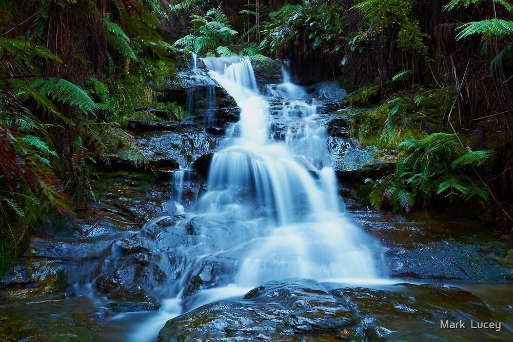 Leura Cascades - Blue Mountains NSW by Mark  Lucey