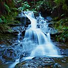 Leura Cascades - Blue Mountains NSW by Mark  Lucey