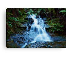 Leura Cascades - Blue Mountains NSW Canvas Print