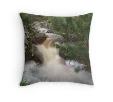 Brian's Gorge Throw Pillow