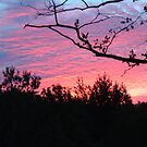 Sunset over White Cloud, MI by Deb  Badt-Covell