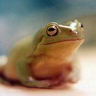 Dream Frog No. 1 by Marc Cram