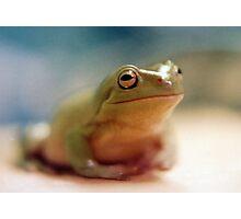 Dream Frog No. 1 Photographic Print