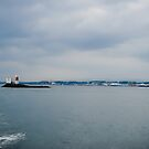 Firth of Forth - Off Inchcolm Island .. by InfotronTof