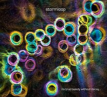 no true beauty without decay...[new version2010] by stormloop