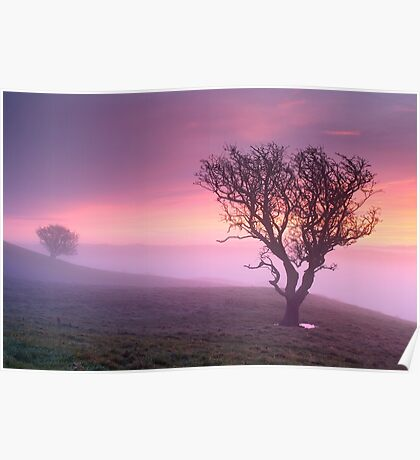 Misty sunrise, The Helm - Cumbria Poster