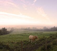 Lincolnshhire Morning by subdvr