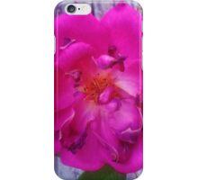 Old Rose iPhone Case/Skin