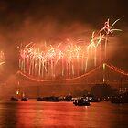 Riverfire Fireworks 2010 by Helen Martikainen