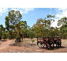 Australian Bushland Photographic Print