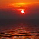 Good Morning Sunshine! by Terri~Lynn Bealle