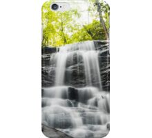Alabama's High Falls iPhone Case/Skin