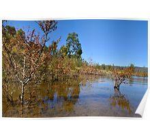 Lake Lonsdale - water shortage, Grampians, Australia Poster