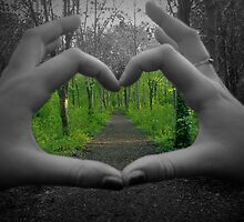 Love Heart Forest by Ashley Margrove