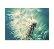 Not sure when you stop thinking dandelions are beautiful... Art Print