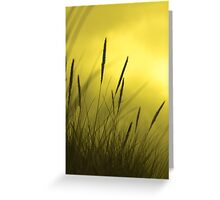 Golden grass Greeting Card